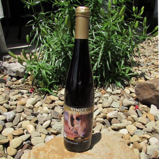 Cabernet Franc at Deer Creek Winery