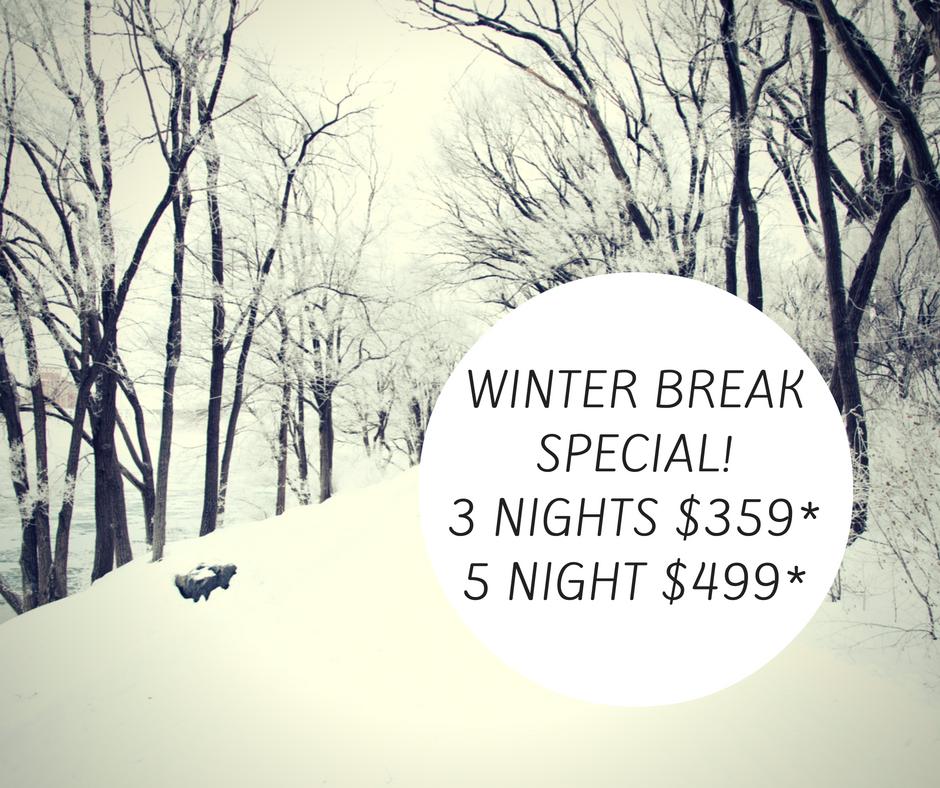 winter-break-special
