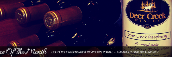 wotm-feb-raspberry